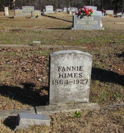 HIMES, FANNIE - Wayne County, Tennessee | FANNIE HIMES - Tennessee Gravestone Photos