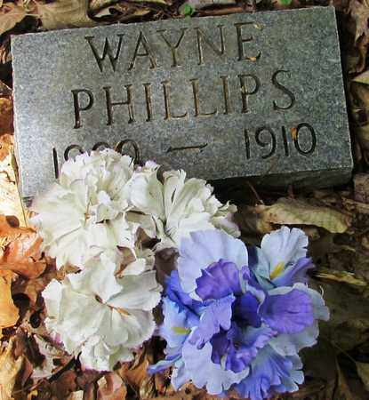 PHILLIPS, WAYNE - Wayne County, Tennessee | WAYNE PHILLIPS - Tennessee Gravestone Photos