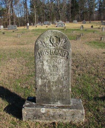 PIGG, J. C. - Wayne County, Tennessee | J. C. PIGG - Tennessee Gravestone Photos