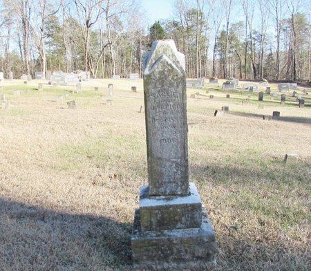 PIGG, SALLIE - Wayne County, Tennessee | SALLIE PIGG - Tennessee Gravestone Photos