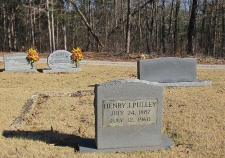 PULLEY, HENRY J. - Wayne County, Tennessee | HENRY J. PULLEY - Tennessee Gravestone Photos