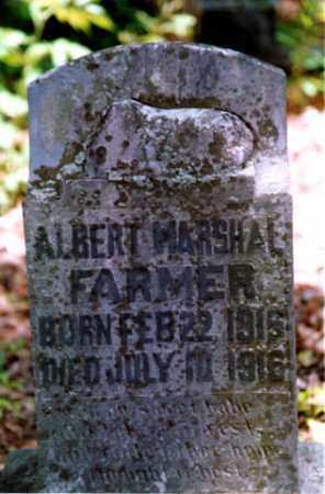 FARMER, ALBERT MARSHALL - Weakley County, Tennessee | ALBERT MARSHALL FARMER - Tennessee Gravestone Photos