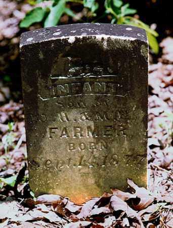 FARMER, INFANT SON - Weakley County, Tennessee | INFANT SON FARMER - Tennessee Gravestone Photos
