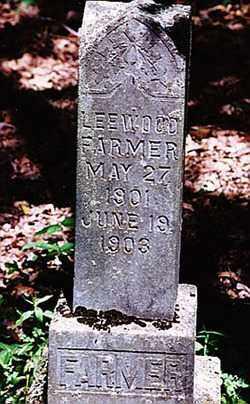 FARMER, LEEWOOD - Weakley County, Tennessee   LEEWOOD FARMER - Tennessee Gravestone Photos