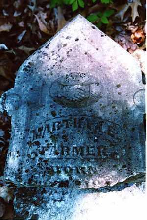 FARMER, MARTHA E - Weakley County, Tennessee | MARTHA E FARMER - Tennessee Gravestone Photos