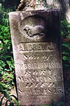 MARTIN, ANDREW JACKSON - Weakley County, Tennessee | ANDREW JACKSON MARTIN - Tennessee Gravestone Photos