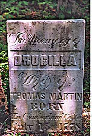 MARTIN, DRUCILLA - Weakley County, Tennessee | DRUCILLA MARTIN - Tennessee Gravestone Photos