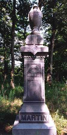 MARTIN, MARSHALL PRESLEY - Weakley County, Tennessee | MARSHALL PRESLEY MARTIN - Tennessee Gravestone Photos