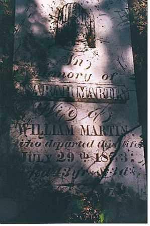 MARTIN, SARAH - Weakley County, Tennessee | SARAH MARTIN - Tennessee Gravestone Photos