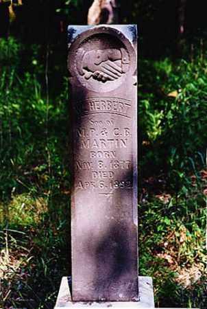 MARTIN, WILLIAM HERBERT - Weakley County, Tennessee | WILLIAM HERBERT MARTIN - Tennessee Gravestone Photos