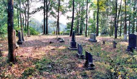 *OVERVIEW #1,  - Weakley County, Tennessee |  *OVERVIEW #1 - Tennessee Gravestone Photos