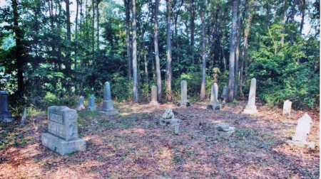 *OVERVIEW #2,  - Weakley County, Tennessee    *OVERVIEW #2 - Tennessee Gravestone Photos