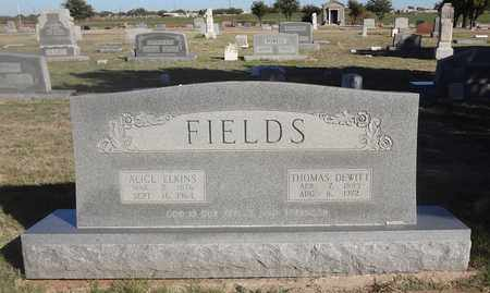 FIELDS, THOMAS DEWITT - Archer County, Texas | THOMAS DEWITT FIELDS - Texas Gravestone Photos