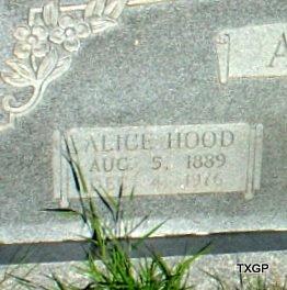 ASKINS, ALICE (CLOSE UP) - Borden County, Texas | ALICE (CLOSE UP) ASKINS - Texas Gravestone Photos