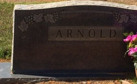 ARNOLD, FAMILY MARKER - Bowie County, Texas | FAMILY MARKER ARNOLD - Texas Gravestone Photos