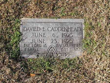 CADDENHEAD, DAVIED E - Bowie County, Texas | DAVIED E CADDENHEAD - Texas Gravestone Photos