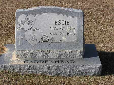 CADDENHEAD, ESSIE - Bowie County, Texas | ESSIE CADDENHEAD - Texas Gravestone Photos