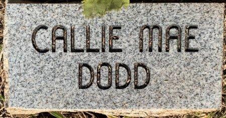 DODD, CALLIE MAE - Bowie County, Texas | CALLIE MAE DODD - Texas Gravestone Photos
