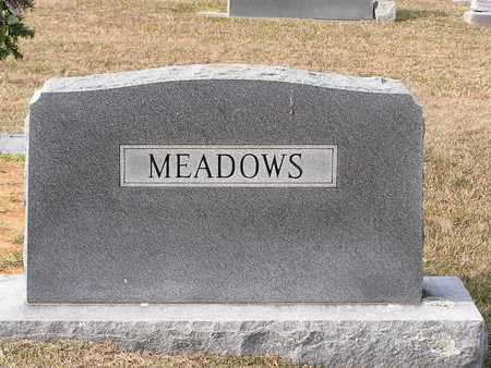 MEADOWS, FAMILY MARKER - Bowie County, Texas | FAMILY MARKER MEADOWS - Texas Gravestone Photos