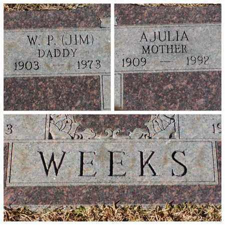 WEEKS, AJULIA - Bowie County, Texas   AJULIA WEEKS - Texas Gravestone Photos