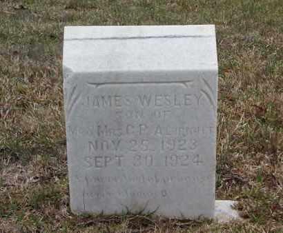 ALBRIGHT, JAMES WESLEY - Cass County, Texas | JAMES WESLEY ALBRIGHT - Texas Gravestone Photos