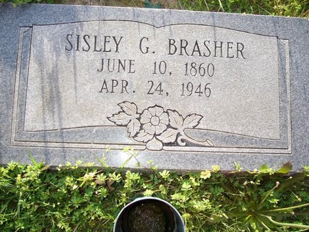 BILBERRY BRASHER, SISLEY G - Cass County, Texas | SISLEY G BILBERRY BRASHER - Texas Gravestone Photos