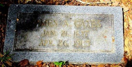 CATES, JAMES A. - Cass County, Texas | JAMES A. CATES - Texas Gravestone Photos