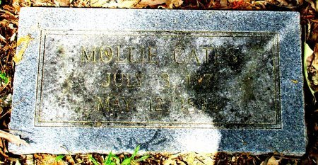 CATES, MOLLIE - Cass County, Texas | MOLLIE CATES - Texas Gravestone Photos