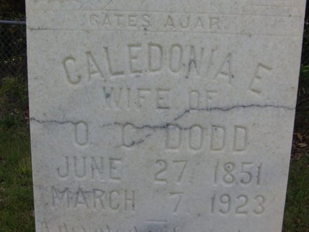 STREET, CALEDONIA E (CLOSE UP) - Cass County, Texas | CALEDONIA E (CLOSE UP) STREET - Texas Gravestone Photos