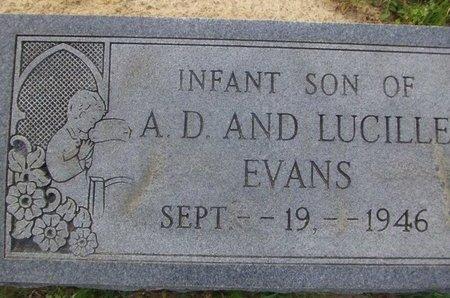 EVANS, INFANT SON - Cass County, Texas | INFANT SON EVANS - Texas Gravestone Photos