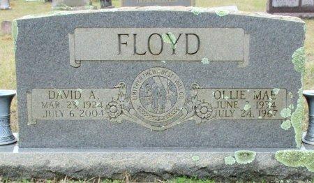 FLOYD, OLLIE MAE  - Cass County, Texas | OLLIE MAE  FLOYD - Texas Gravestone Photos