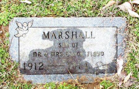 FLOYD, MARSHALL - Cass County, Texas | MARSHALL FLOYD - Texas Gravestone Photos