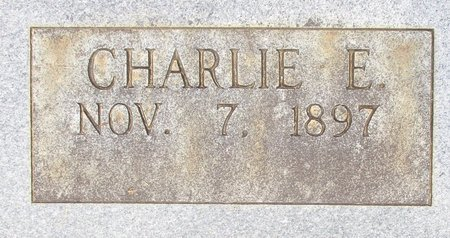 FOSTER, CHARLIE E.(CLOSE UP) - Cass County, Texas | CHARLIE E.(CLOSE UP) FOSTER - Texas Gravestone Photos