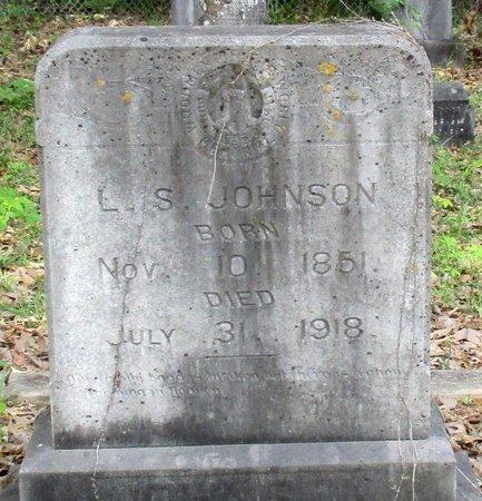 JOHNSON, L. S. - Cass County, Texas | L. S. JOHNSON - Texas Gravestone Photos