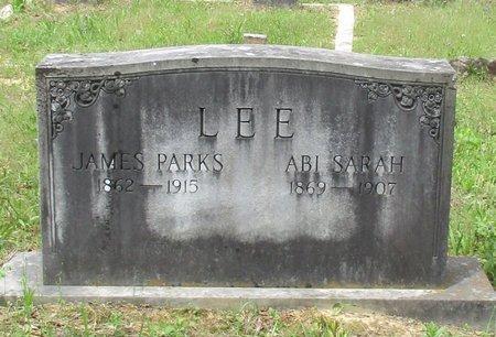 LEE, JAMES PARKS - Cass County, Texas | JAMES PARKS LEE - Texas Gravestone Photos