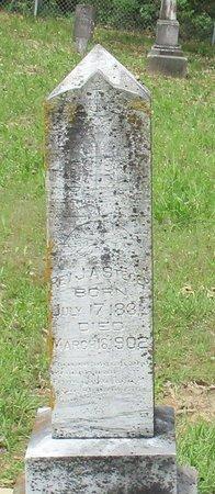 STEGER, J. A., REV - Cass County, Texas | J. A., REV STEGER - Texas Gravestone Photos