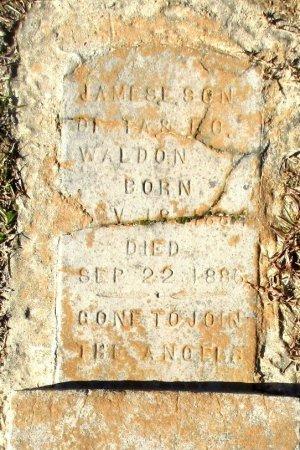WALDON, JAMES E  - Cass County, Texas | JAMES E  WALDON - Texas Gravestone Photos