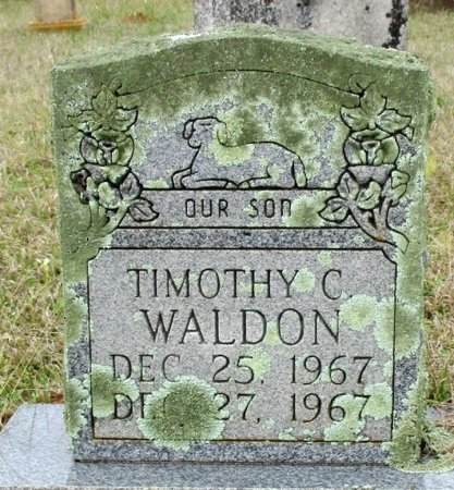 WALDON, TIMOTHY C. - Cass County, Texas | TIMOTHY C. WALDON - Texas Gravestone Photos