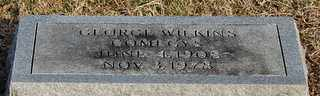 COMEGYS, GEORGE WILKINS - Collin County, Texas | GEORGE WILKINS COMEGYS - Texas Gravestone Photos
