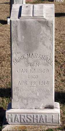 MARSHALL, ALICE - Collin County, Texas   ALICE MARSHALL - Texas Gravestone Photos