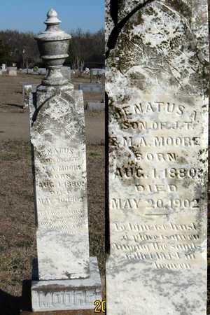 MOORE, JENATUS A. - Collin County, Texas | JENATUS A. MOORE - Texas Gravestone Photos