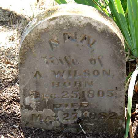 WILSON, ANN - Collin County, Texas | ANN WILSON - Texas Gravestone Photos
