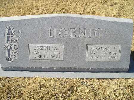 FLEITMAN HOENIG, SUSANNA ELIZABETH 'SUSIE' - Cooke County, Texas | SUSANNA ELIZABETH 'SUSIE' FLEITMAN HOENIG - Texas Gravestone Photos