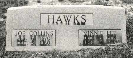 JONES HAWKS, MINNIE LEE - Ellis County, Texas | MINNIE LEE JONES HAWKS - Texas Gravestone Photos