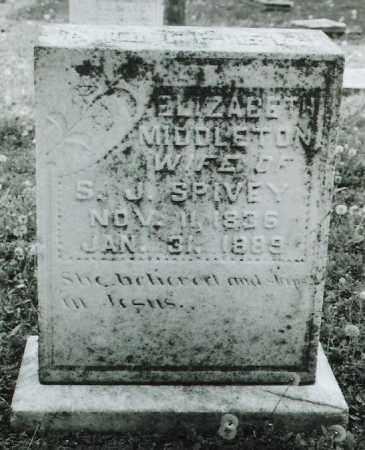 SPIVEY, ELIZABETH - Ellis County, Texas | ELIZABETH SPIVEY - Texas Gravestone Photos