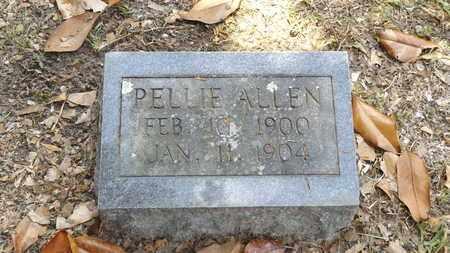 ALLEN, PELLIE - Franklin County, Texas   PELLIE ALLEN - Texas Gravestone Photos