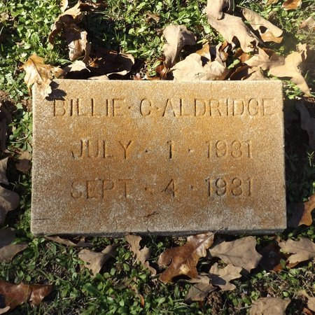 ALDRIDGE, BILLIE C - Gregg County, Texas | BILLIE C ALDRIDGE - Texas Gravestone Photos
