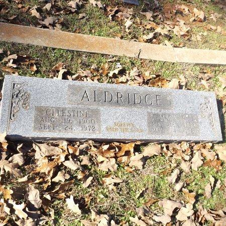 ALDRIDGE, MINNIE CELESTINE - Gregg County, Texas   MINNIE CELESTINE ALDRIDGE - Texas Gravestone Photos