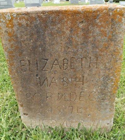 NASH, ELIZABETH - Gregg County, Texas | ELIZABETH NASH - Texas Gravestone Photos