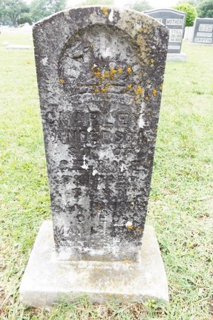 SKIPPER, CHARLEY ANDERSON - Gregg County, Texas   CHARLEY ANDERSON SKIPPER - Texas Gravestone Photos